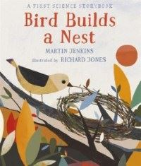 Bird Builds a Nest